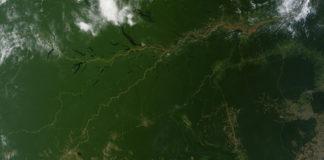 Tropické pralesy