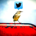 twitter_pokrocile_operatory